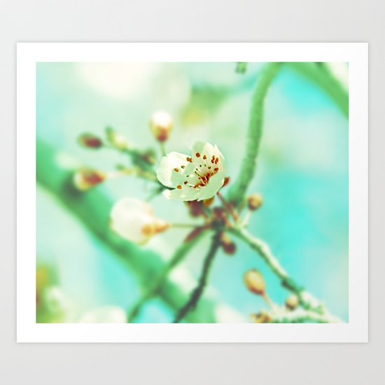 Bloom Art Print