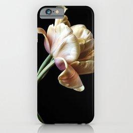 Tulipmania iPhone Case