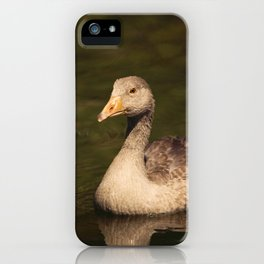 Ducky iPhone Case