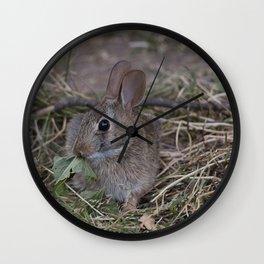 Tiny Garden Bunny Wall Clock