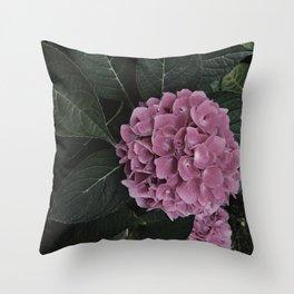 Pink Hydrangea Flower Garden Southern Beauty Summer Nature Photography Throw Pillow