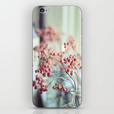 Rose Hips in a Window Still Life Autumn Botanical iPhone & iPod Skin