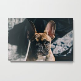Hipster Frenchy Metal Print