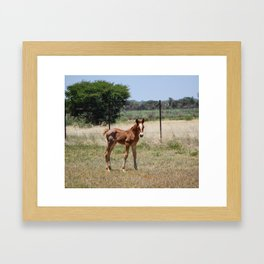 Welcome to the world little one Framed Art Print