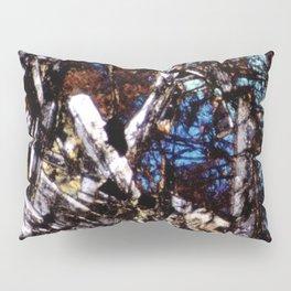 Pyroxene and Feldspar Pillow Sham