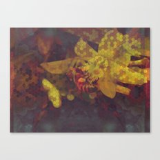 Honey Bee: Gold Canvas Print