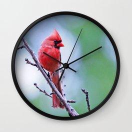 Rainbird Wall Clock