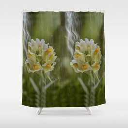 Yellow common Toadflax flower Shower Curtain
