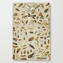 Insects Vintage Scientific Illustration French Language Encyclopedia Lithographs Educational Cutting Board