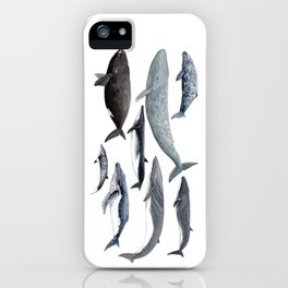 Whales and right whale iPhone Case