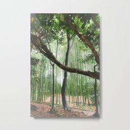 Kyoto Calm Metal Print