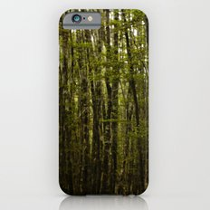 Forest For Trees iPhone 6s Slim Case