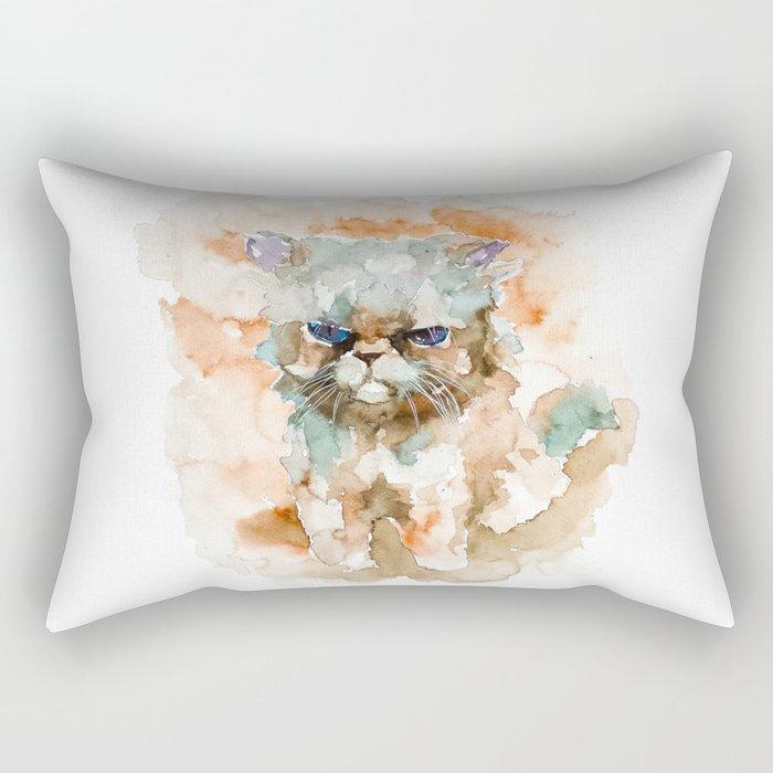 CAT#11 Rectangular Pillow