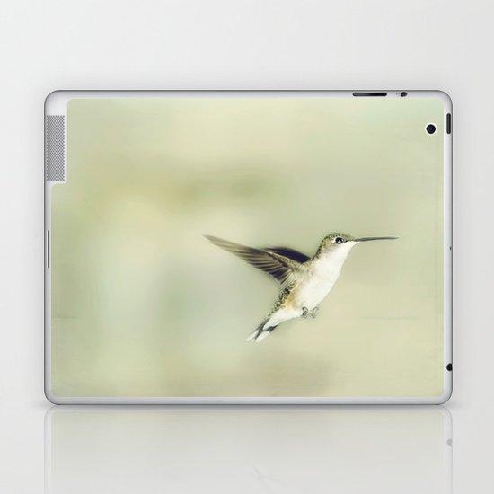 Mid flight Laptop & iPad Skin