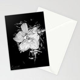 Tanto Amor IV Stationery Cards