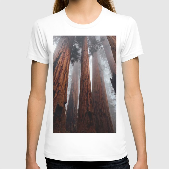 Woodley Forest T-shirt