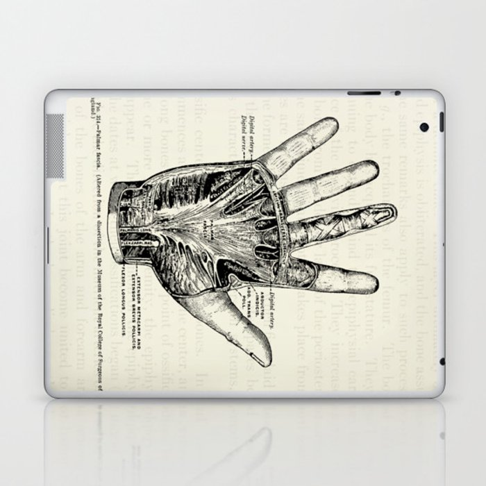 Vintage Anatomy Illustration of the Palm of the Hand Laptop & iPad ...