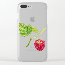 Raspberry, Fruit, Forest, Nature, Leaf, Berry, Sun, Summer, Happy Clear iPhone Case