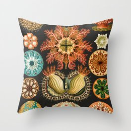 Ernst Haeckel Sea Squirts Illustration, 1904 Throw Pillow