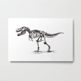Dinosaur Skeleton in Ballpoint Metal Print