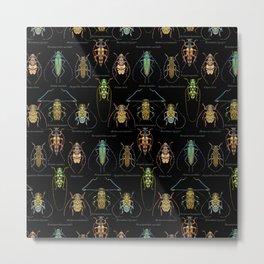 Cerambycidae Metal Print