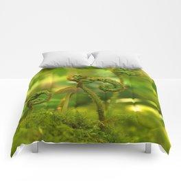 Mushroom In The Ferns... Comforters