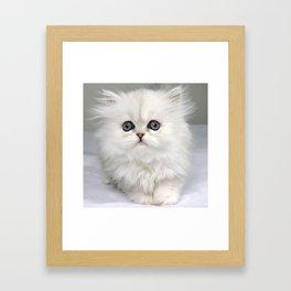 White Kitty Cat Framed Art Print