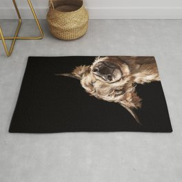Sneaky Highland Cow in Black Rug
