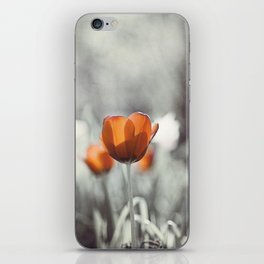 Orange Grey Tulip Photography, Burnt Orange Tulip Flowers Photo iPhone Skin