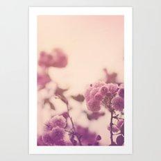 Summer Botanical Art Print