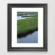 Cattus Island Framed Art Print
