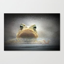 Frog from Front Painting Style Canvas Print