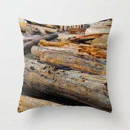 Driven Driftwood Throw Pillow