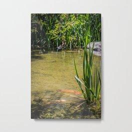 Pond Side  Metal Print