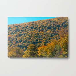 Fall in Franconia Notch State Park. New Hampshire. USA. Metal Print