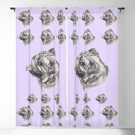 Gotta draw the Bully Dog Blackout Curtain