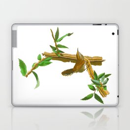 BEWICK'S LONG TAILED WREN Laptop & iPad Skin
