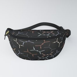 Compton scattering Feynman diagrams on Black Fanny Pack