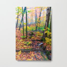Oberg Mountain Minnesota-Forest Fall Colors Metal Print