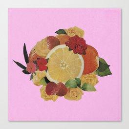 Pink Fruit Canvas Print
