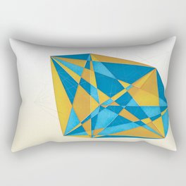 a new geometry Rectangular Pillow