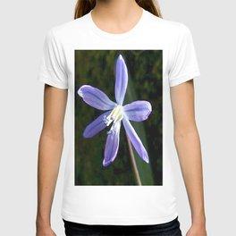 Scilla Blossom T-shirt