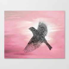 Pink And Lace Canvas Print