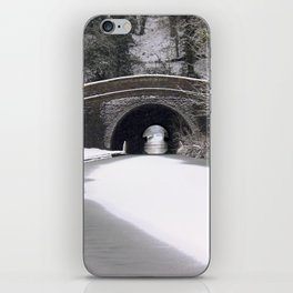 Snowing on the canal iPhone Skin