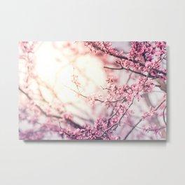 Flower Sunrise Metal Print