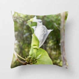 Delicate butterfly tree flower Throw Pillow