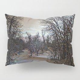 Satisfying the Soul Pillow Sham