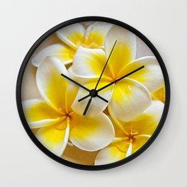 Plumeria Blossoms Wall Clock