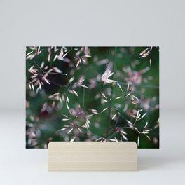 Shimmering Seeds Mini Art Print