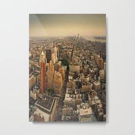 Empire State View Metal Print